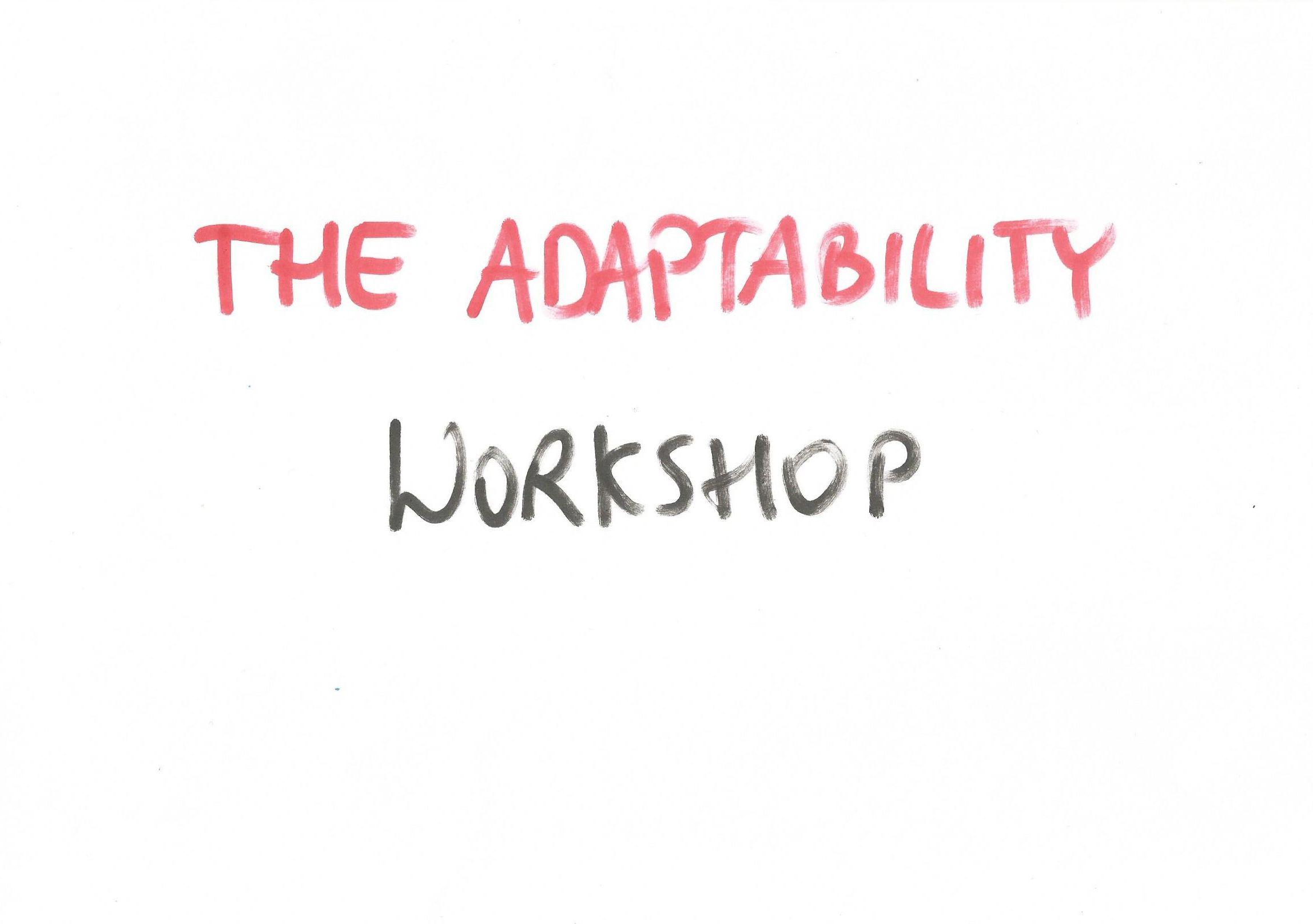 The adaptability Workshop by Witold Wisniewski